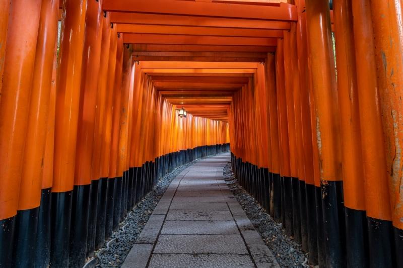 Colourful Fushimi Torii gates, in Kyoto, Japan.
