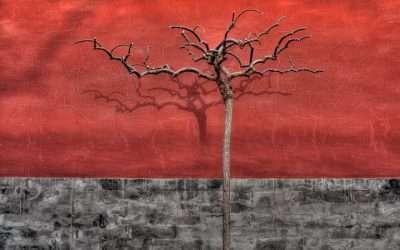 Barren Tree in Winter, Beijing